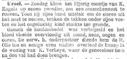 Het Nieuws Van Den Dag, 1 augustus 1894 Gans verbrijzeld