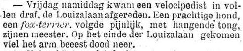 Het Nieuws Van Den Dag, 14 oktober 1894 Prachtige hond