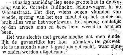 Het Nieuws Van Den Dag,  25 oktober 1894 Wonden uitgebrand
