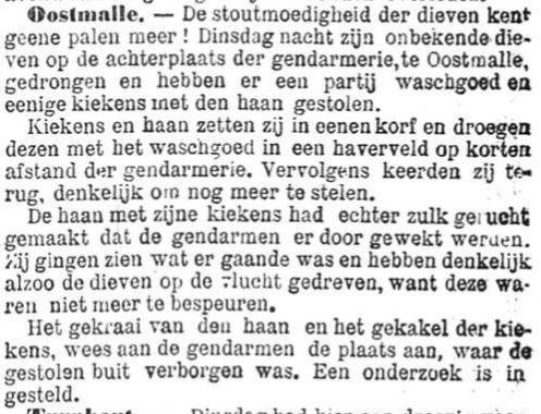 Het Nieuws Van Den Dag, 4 augustus 1894 Wasgoed en kiekens