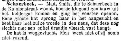 Het Nieuws Van Den Dag, 9 oktober 1894 Slechts met één draadje vlees
